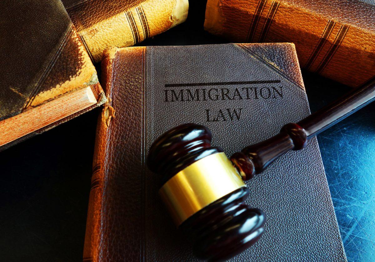 a book on immigration la